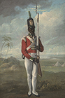Portrait of a Private of the 8th West India Regiment by  English School
